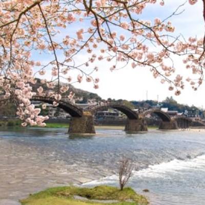 錦帯橋から岩国城の山裾を走るコース(岩国市)