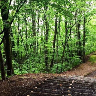 ランニングのメッカ!一つ森公園コース(秋田市)