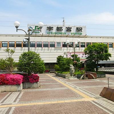 ラン後の打ち上げは餃子!宇都宮ラン&餃子コース(宇都宮市)