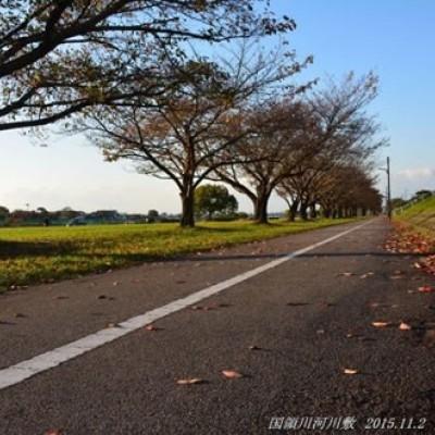 国領川(こくりょうがわ)河川敷緑地コース(新居浜市)