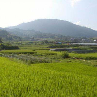 たかすみ温泉から古民家カフェを走る山道一周コース(東吉野村)