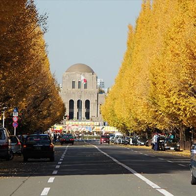迎賓館や銀杏並木の美しさ!神宮外苑・赤坂御所コース(港区)