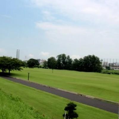 きれいな芝生の広場、石原緑地周回コース(高崎市)