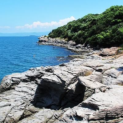 海沿いの道・堂崎の桜並木をめぐるコース(長与町)