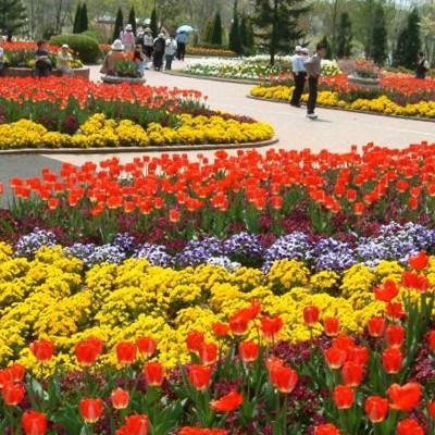 家族で訪れたい。とちぎわんぱく公園コース(壬生町)