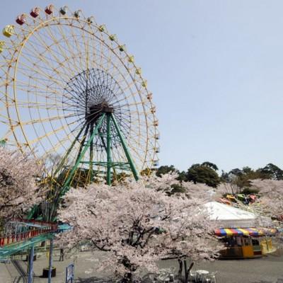 華蔵寺(げぞうじ)公園1500mコース(伊勢崎市)