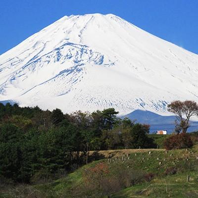 往路は上り復路は下り「富士裾野高原マラソン」コース(裾野市)