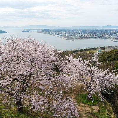 海・山の絶景!湊山公園と米子城址トリムコース(米子市)