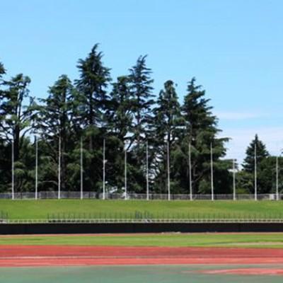 ふたつの周回コース!上尾運動公園&さいたま水上公園(上尾市)