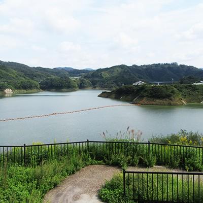 起伏のあるダム湖畔・さくらおろち湖一周コース(雲南市)