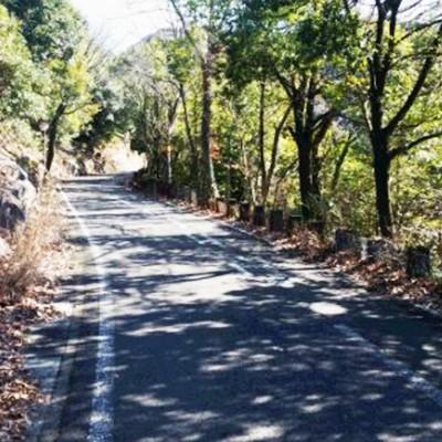 険しい上り下りで鍛錬。金華山ドライブウェイコース(岐阜市)