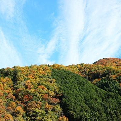 緑豊かな静寂の地、大原の山あいを走るコース(京都市)