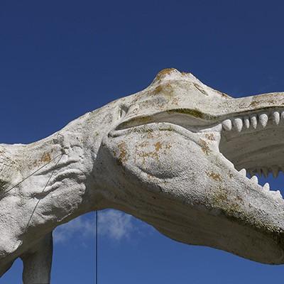 恐竜渓谷を走り抜ける!ジオパーク恐竜の森コース(勝山市)