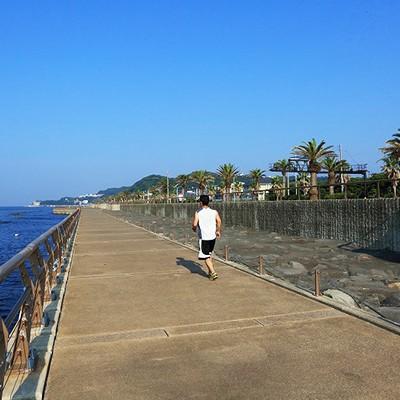 猿島を眺めながら!横須賀シーサイドコース(横須賀市)