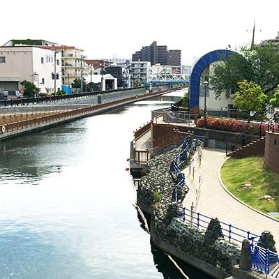 野鳥と花と江東区親水遊歩道コース(江東区)
