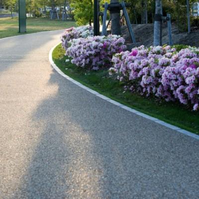 花と緑の公園!西大寺緑花公園周回コース(岡山市)