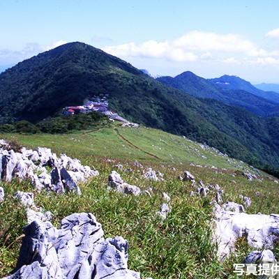 標高1400m、天狗高原・四国カルストコース(津野町)
