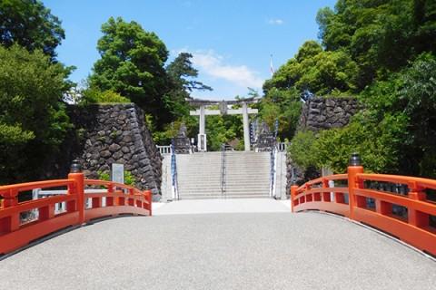 桜並木を走る!武田神社往復コース(甲府市)