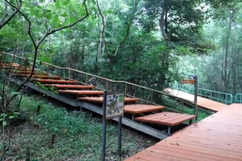 森林浴ラン、小幡緑地公園コース(名古屋市)