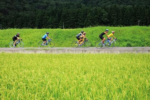 フラットな自転車道、手取キャニオンロードコース(白山市)