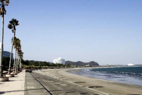 日向灘の海岸線を走る!青島トロピカルロード(宮崎市)