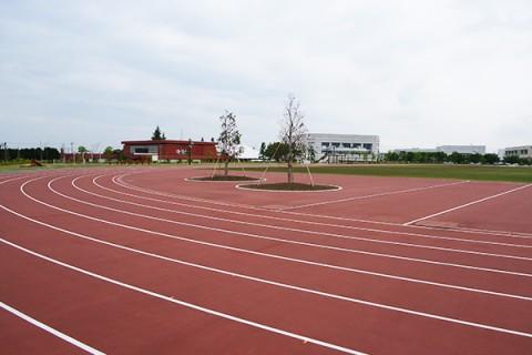 地元ランナーが集うスポーツ・健康の森公園コース(滑川市)