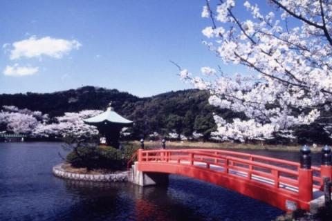徳川義直の菩提寺!定光寺公園の足元ふかふかコース(瀬戸市)