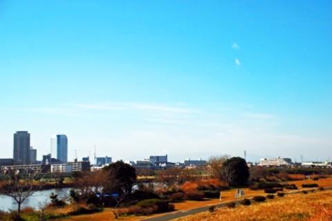 平坦でノンストップ、多摩川沿いランニングコース(川崎市)