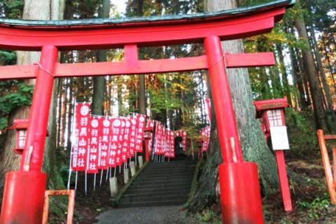きつい坂練習に!羽黒山神社参道コース(宇都宮市)