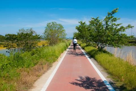 平坦な自転車道「びわ湖よし笛ロード」コース(近江八幡市)