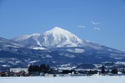 冬には白鳥が飛来、大川緑地堤防ランコース(会津若松市)