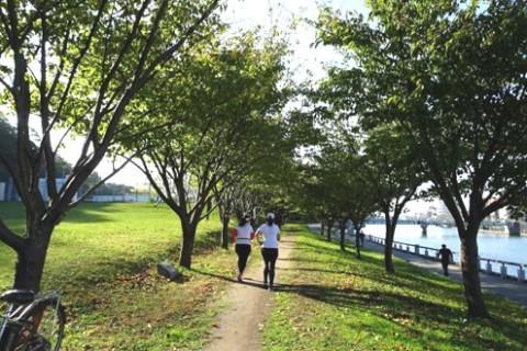徳島城跡の城山を周回!徳島中央公園コース(徳島市)