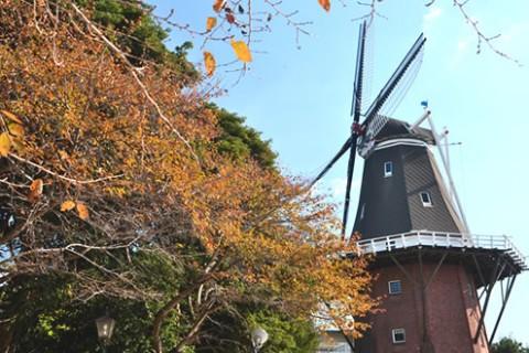 永源山を上る!オランダ風車コース(周南市)