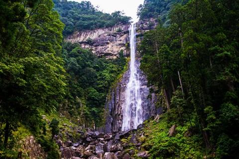 那智高原公園から那智の滝往復コース(那智勝浦町)