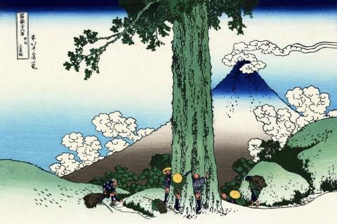 第6回 世界文化遺産″富士山″山麓一周フットレース