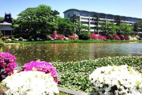 早朝におすすめ、秋田駅前プチ観光コース(秋田市)