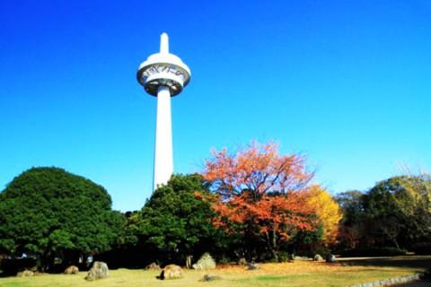 日本初の飛行場!所沢航空記念公園コース(所沢市)