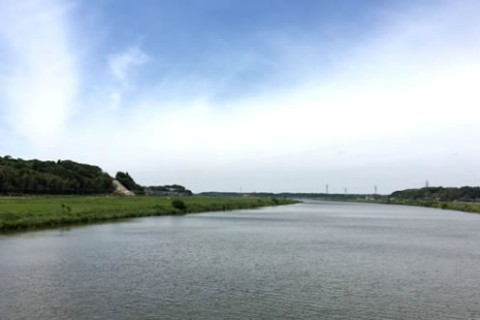 自然いっぱいの水辺の景色!印旛沼ぐるりコース(印西市)