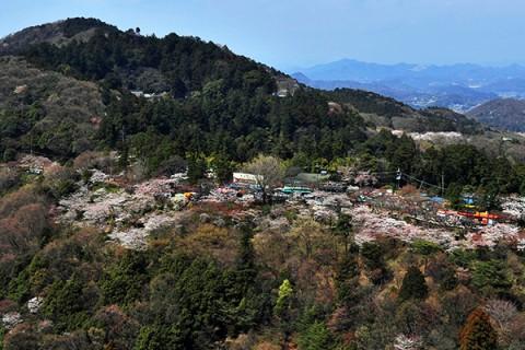 歴史ある山を上る!太平山山頂めぐりコース(栃木市)