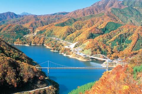 夢の架け橋からの絶景!九頭竜湖コース(大野市)
