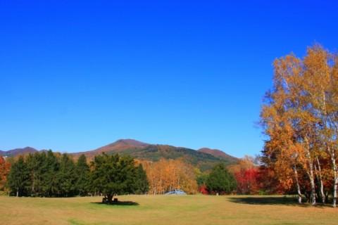 ランニング大会のメッカ、真駒内公園コース(札幌市)