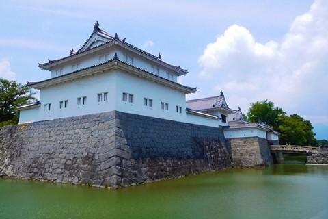 歴史を知る!駿府城、浅間神社をめぐる市内観光コース(静岡市)
