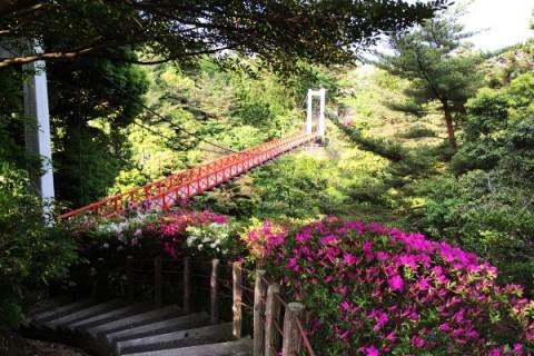 遠島山公園周回コース(能登町)