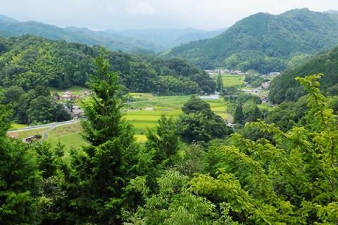 山の空気を堪能!城山一周リフレッシュコース(安来市)