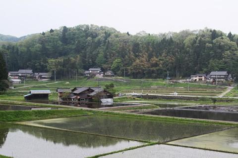 ブナ林と世界農業遺産の里山トレランコース(中能登町)