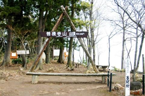走りやすく人気!菩提寺山トレイルコース(新潟市)