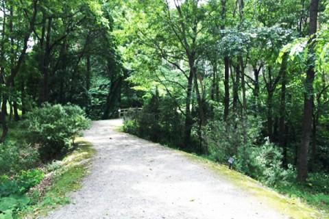 風情あるいにしえの歌の道。昭和万葉の森コース(黒川郡)