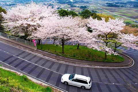 天狗伝説の残る愛宕山アップダウンコース(笠間市)