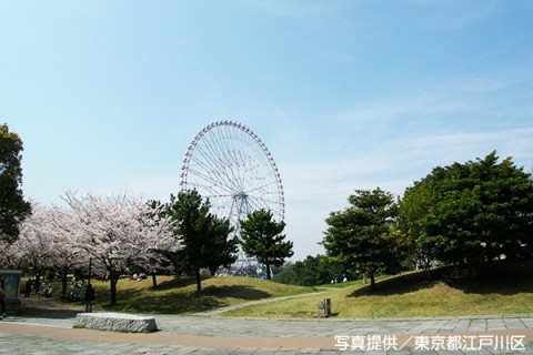 潮風と走ろう! 葛西臨海公園コース(江戸川区)