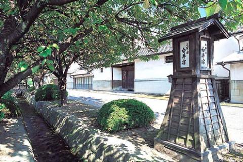 歴史探訪ラン!白井宿~黒井峯遺跡コース(渋川市)